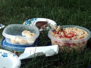 Father's Day Picnic